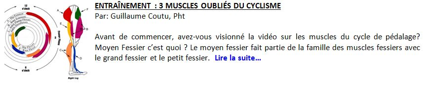 23e-3musclesoublies